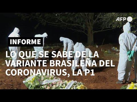 Lo que se sabe de la variante brasileña del coronavirus, la P1   AFP